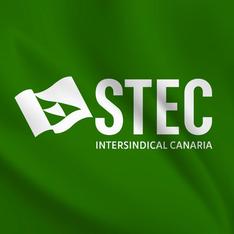 logo_Stec-portada